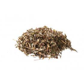 Artemisia vulgaris sommità fiorite BIO*