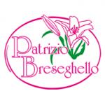 Breseghello Patrizio